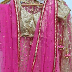 Dresses & Skirts - Indian lehanga chili
